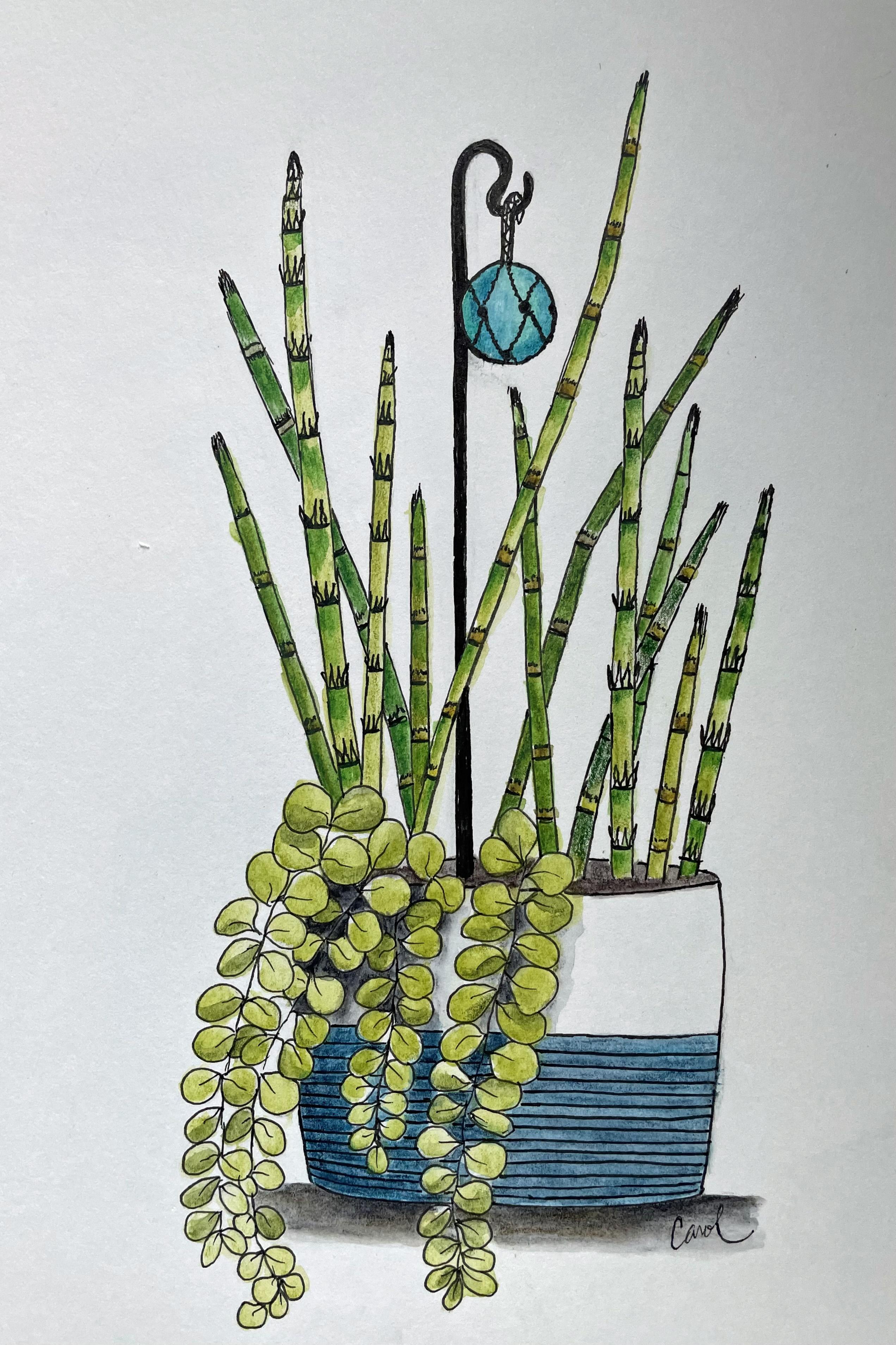 horsetailplant RS